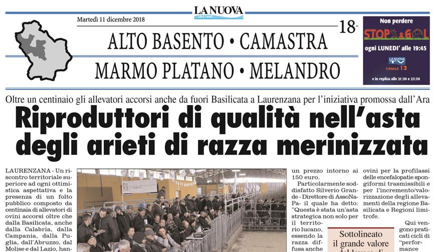 Rassegna Stampa 2018